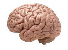 wstrząs mózgu